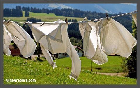 blanquear ropa con vinagre