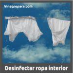 vinagre para desinfectar ropa interior
